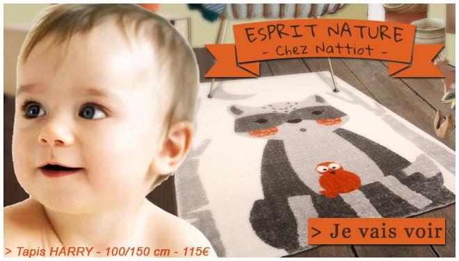 Compo Nattiot
